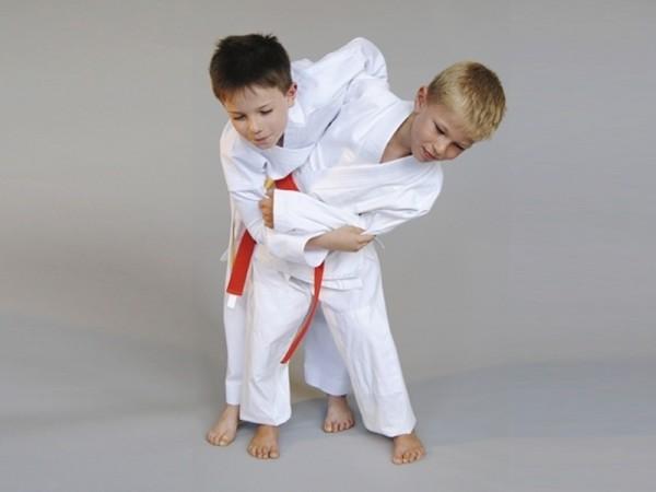 Judo BASIC Edition 380 gr